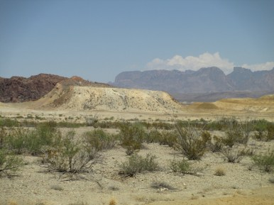 not so lush nearing Terlingua - 105F in the shade, wherever that might be