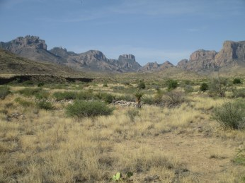spires of the Chisos Mountain rule the desert grassland, nearing Panther Junction...panther seems to be Texan for mountain lion