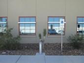 each Joshua Tree was set between windows at regular intervals, creosotes between...