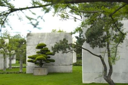 The Tree Museum by Enzo Enea
