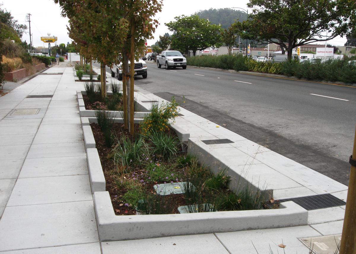Drystonegarden 187 Sustainability