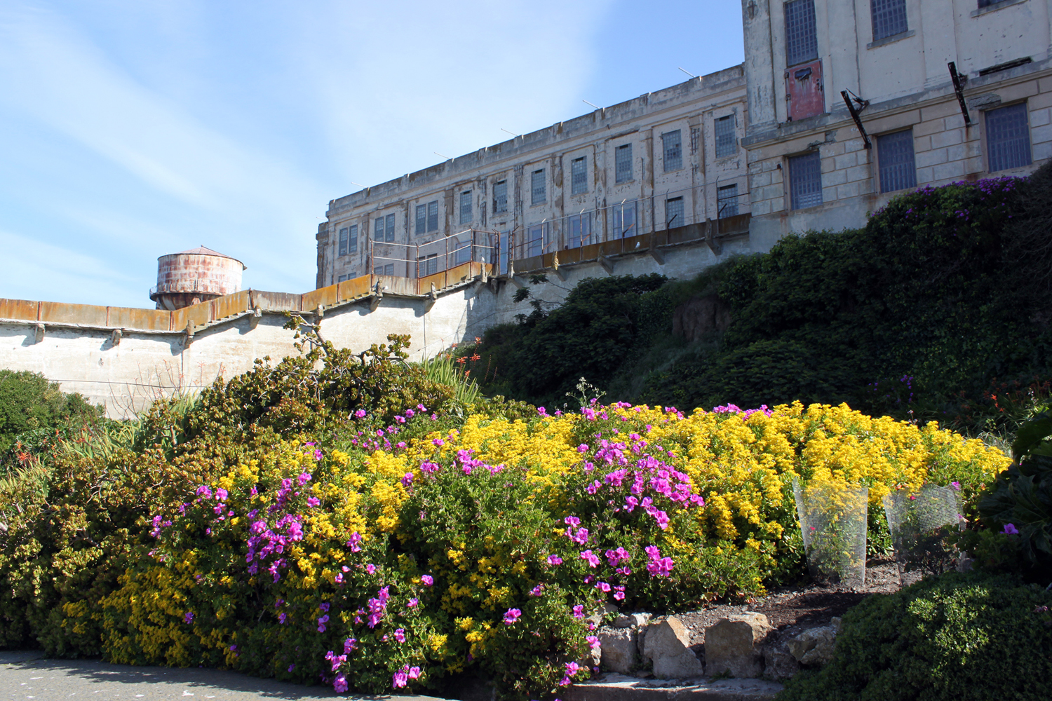 DryStoneGarden » Blog Archive » The Gardens at Alcatraz