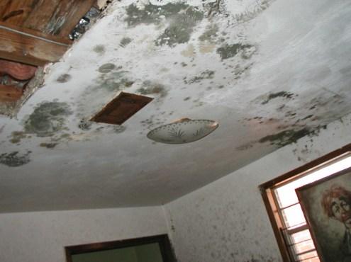ceiling repair vancouver