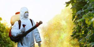 شركة رش مبيدات بالرياض شركة رش مبيدات بالرياض شركة رش مبيدات بالرياض Spray pesticides in Riyadh CompanySpray pesticides Company