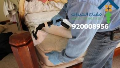 افضل شركة رش البق شمال الرياض 920008956