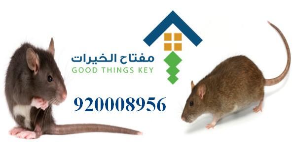 افضل شركة مكافحة الجرذان شمال الرياض 920008956