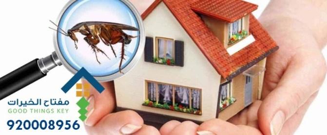 افضل شركة مكافحة حشرات شرق الرياض 920008956