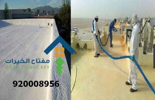 شركة عزل جنوب الرياض 920008956