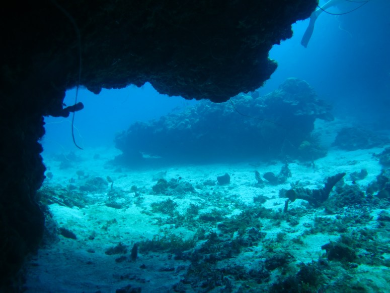 grotte à la Caye d'Obian- DSC club de plongée du Diamant