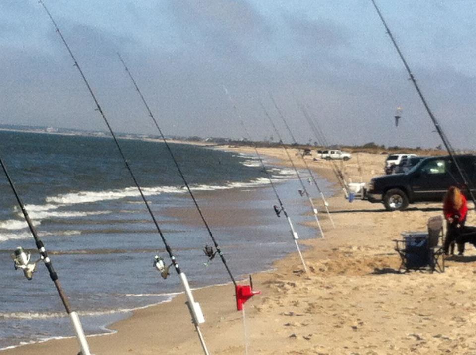surf fishing, beach plum island, DSF, delaware surf fishing,