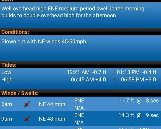 Wave and Wind info Ocean City Maryland - delaware-surf