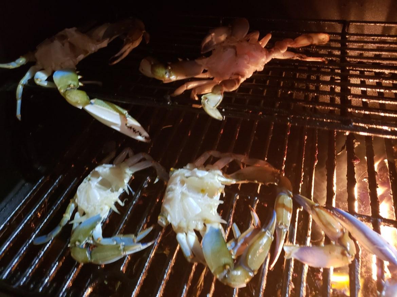 PETA, blue crabs, delaware, sussex county, baltimore