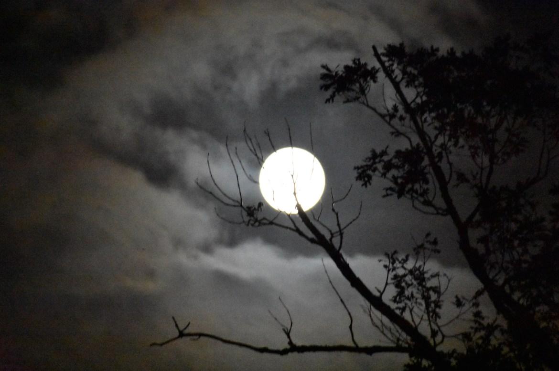 september full moon, harvest moon,