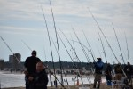 wots, wR ON THE SHORE, delaware, sussex county, the wheelhouse, surf fishing tournament,