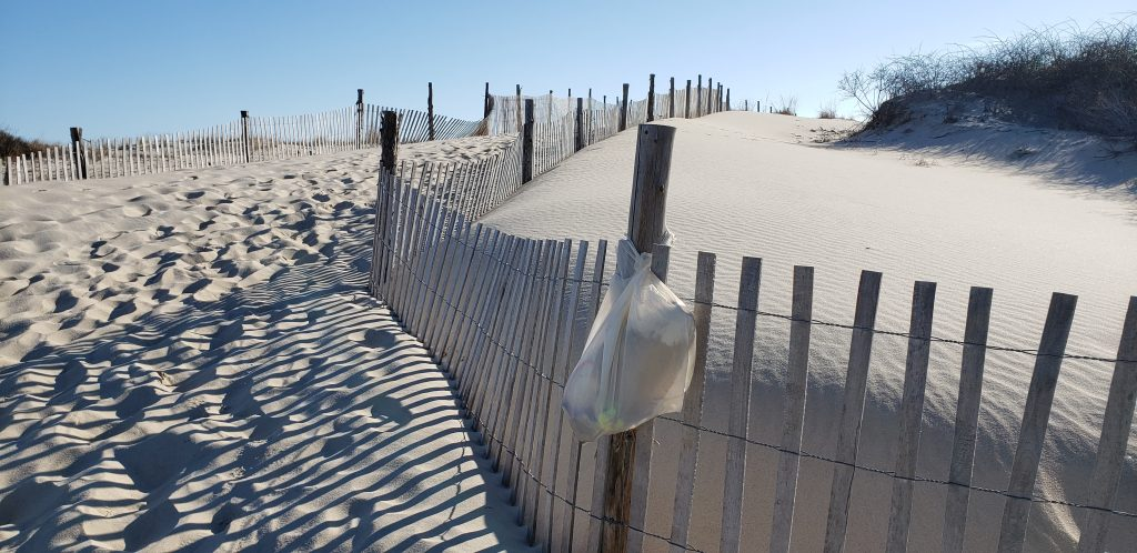carry in carry out, delaware state parks, trash on the beach, beach clean ups,