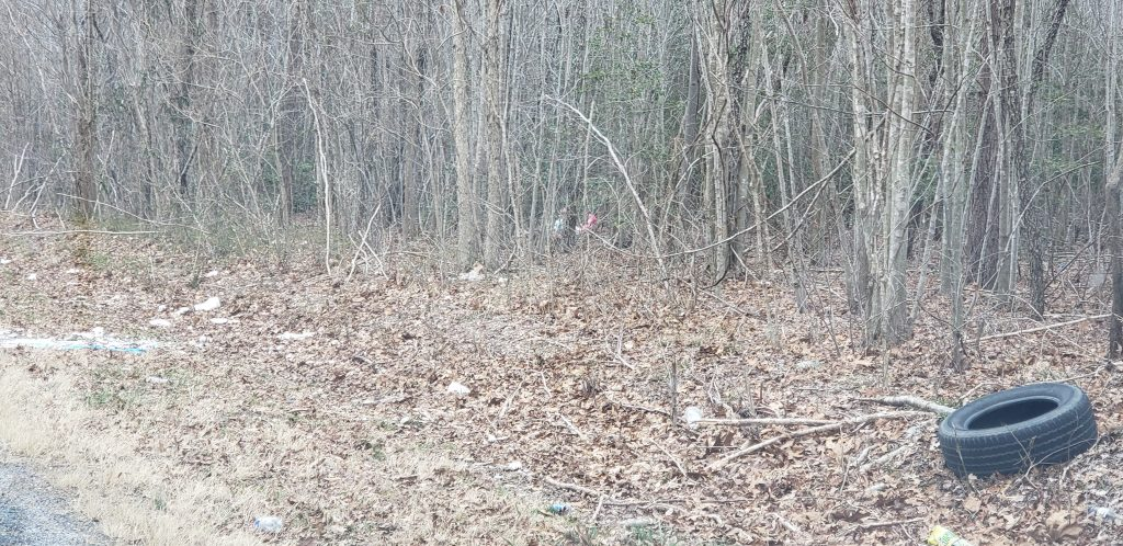 Request for Litter Clean Up Along Roadway, sussex county, trash on the road, litter,