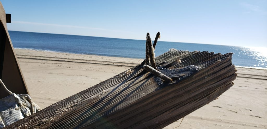beach cleann up, delaware, storm debris