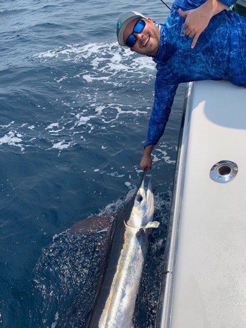 delaware, white marlin, sussex county, indian river marina, billfish, offshore fishing, white marlin open
