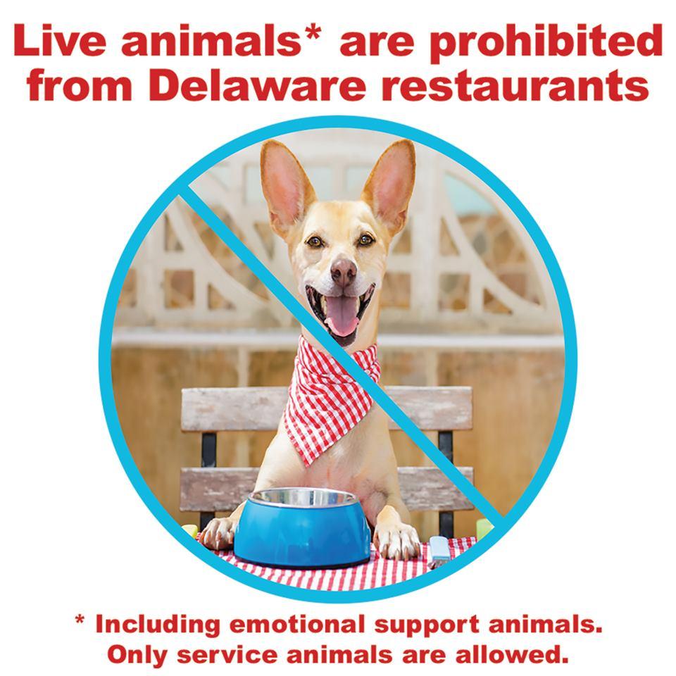 no pets in restaurants in Delaware