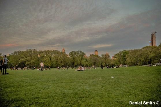 Central Park At Dusk