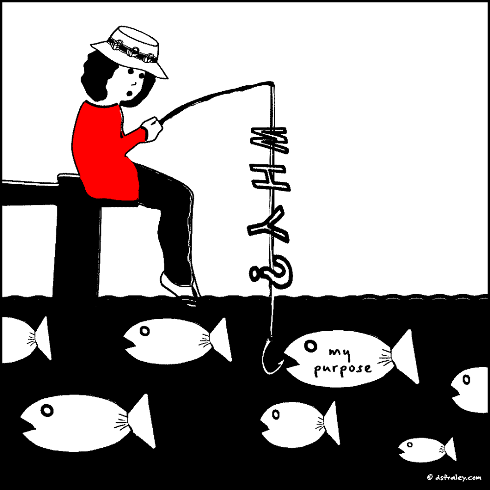1806-norma-92-why-fish-UP