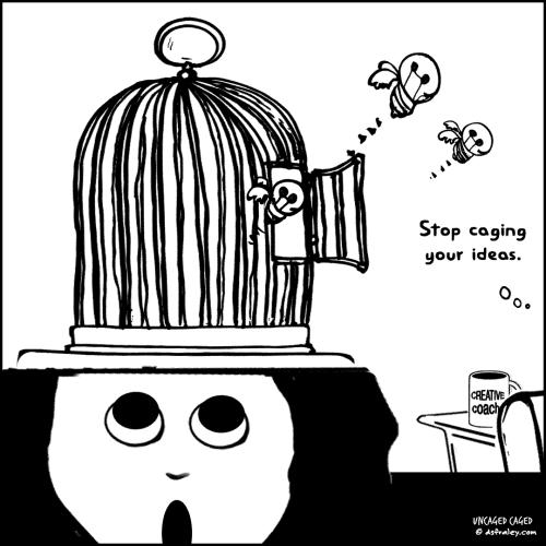 1807-norma-11-coach-head-cage-UP