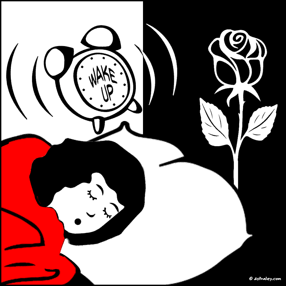 1808-norma-16-bedtime-wake-UP