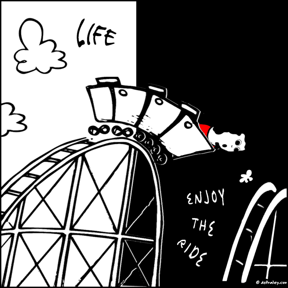 Life - Enjoy The Ride