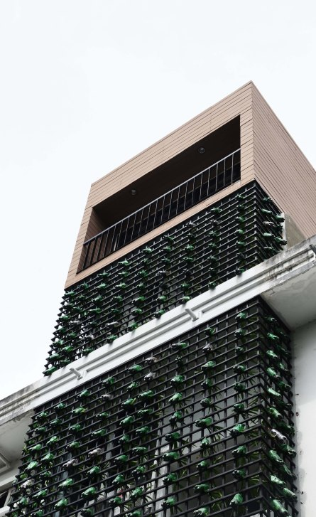 recycle green wall