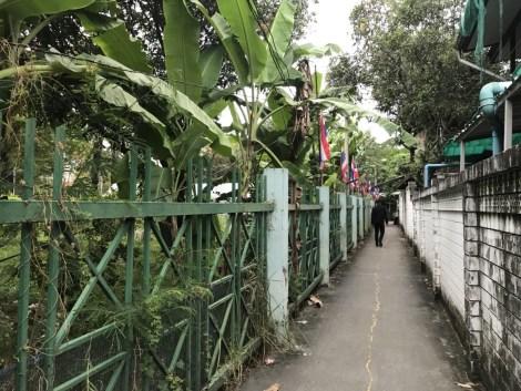 Charn Bangkoknoi (38)
