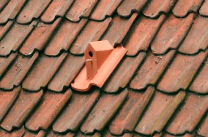 klaas-kuiken-birdhouse