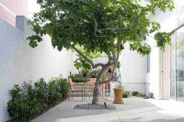 Thaimungs-การ์เด้นท์-เทคนิคจัดสวนพื้นที่หน้าบ้านให้ดูสมัยใหม่-8