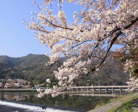嵐山(京都市右京區)