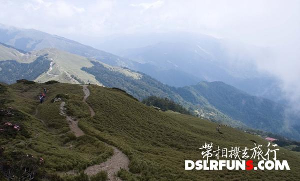 hehuan-du-juan (3)
