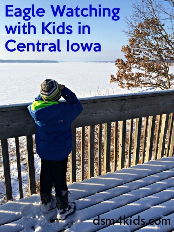 Eagle Watching with Kids in Central Iowa - dsm4kids.com
