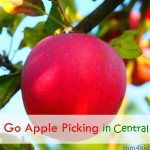 Let's Go Apple Picking in Central Iowa! - dsm4kids.com