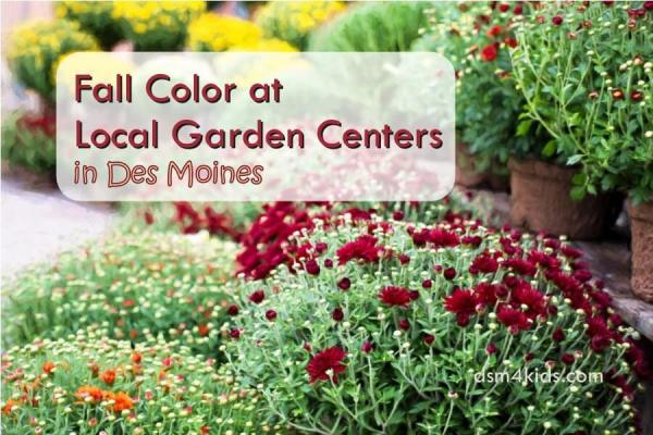 Fall Color at Local Garden Centers in Des Moines - dsm4kids.com