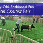 Enjoy Old-Fashioned Fun at the County Fair - dsm4kids.com