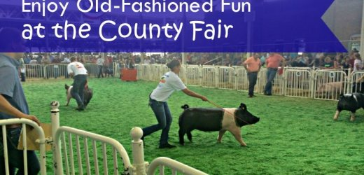 Enjoy Old-Fashioned Fun at the County Fair