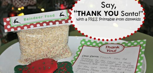 "Say, ""Thank You Santa!"" with a FREE Printable from dsm4kids"