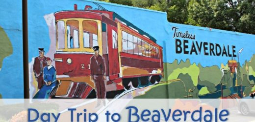 Day Trip to Beaverdale