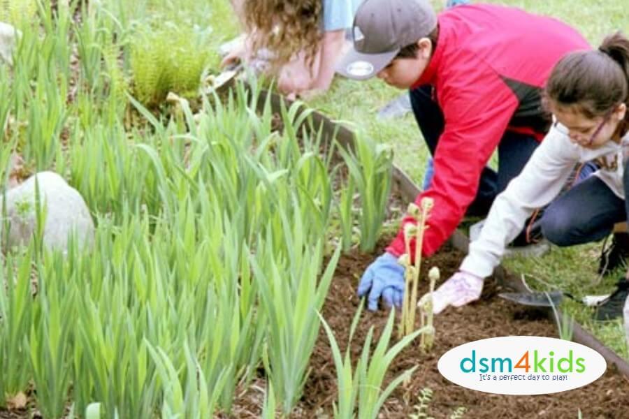 Family Volunteer Opportunities in Des Moines dsm4kids