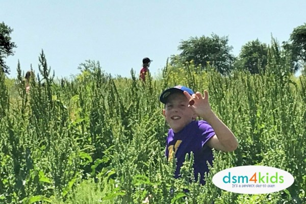 2018 Pick-Your-Own Berry Farms in Central Iowa – dsm4kids.com