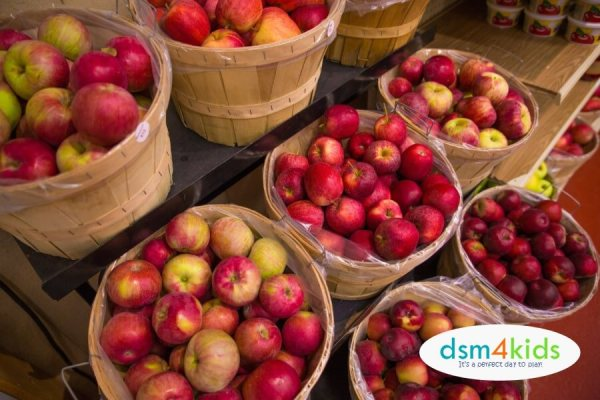 2018: 10 Places to Go Apple Picking This Fall Near Des Moines – dsm4kids.com