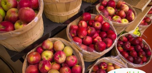 2018: 11 Places to Go Apple Picking This Fall Near Des Moines