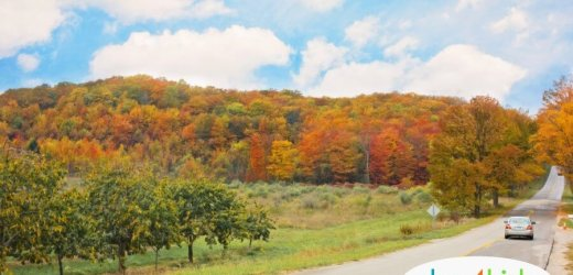 25 Perfect Fall Family Day Trips from Des Moines