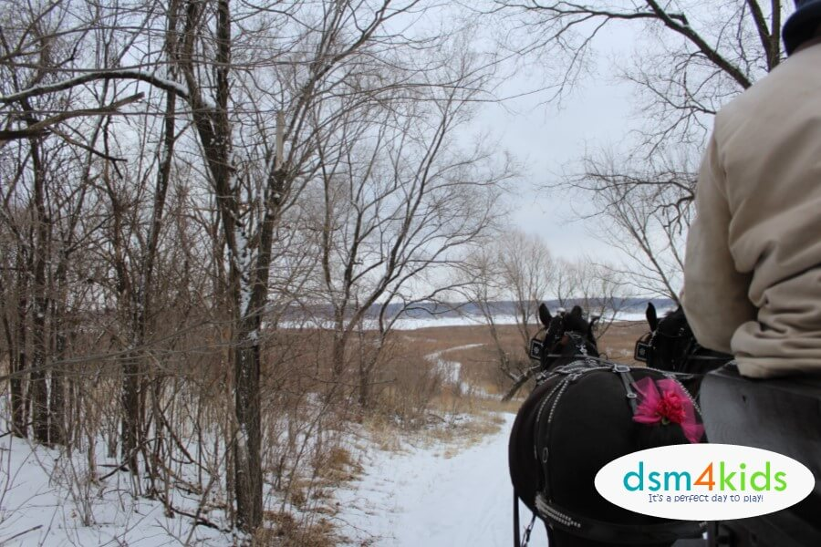 It's Lovely Weather for a Sleigh Ride Together at Jester Park Equestrian Center