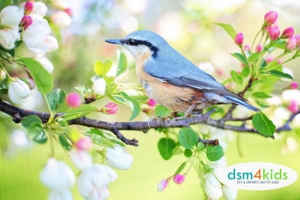 40 Fantastic Spring Activities 4 Families in Des Moines – dsm4kids.com