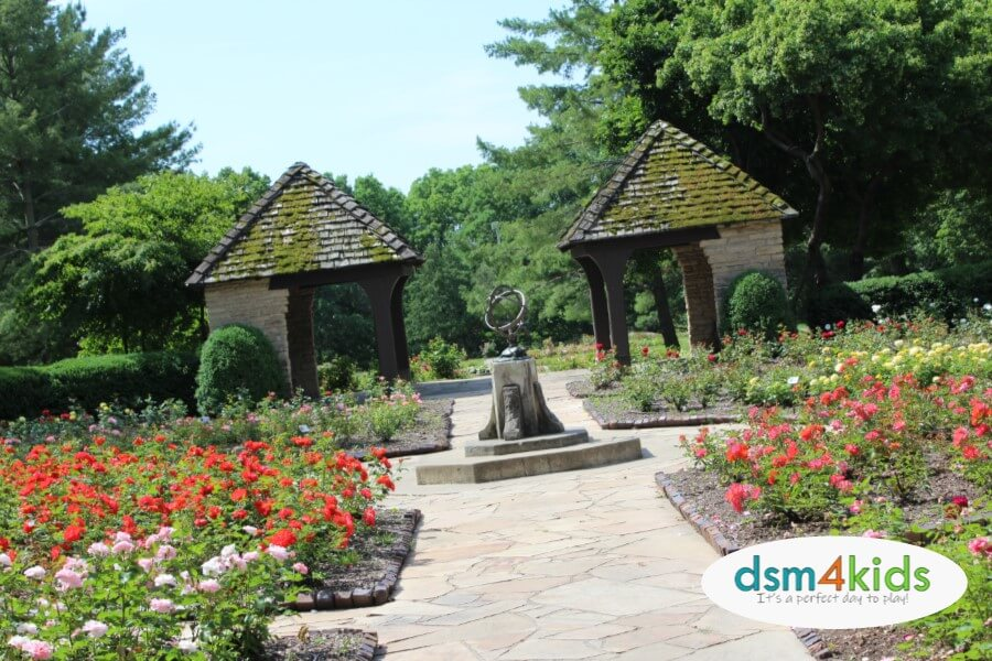 Des Moines Kids Can Stop and Smell the Roses at the Clare and Miles Mills Rose Garden