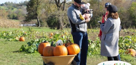 Pumpkin Patches Near Des Moines – 2019 Edition